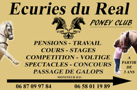 Centre Equestre  Poney Club Real's Horse